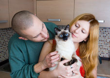 Man, woman and a cat. At home in the kitchen Stock Photo
