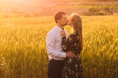 Man and woman with closed eyes embracing and kissing in wheat field on the dusk. Man and women with closed eyes embracing and kissing in wheat field on the dusk stock photos