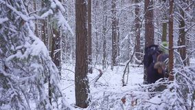 Man and woman couple is throwing snowballs to each other together in a snow winter forest. young man plays snowballs in. The forest. hd stock video footage