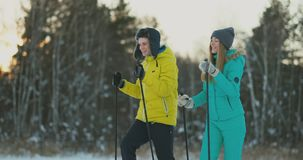 A man and woman cross-country skiing in the winter forest stock footage