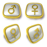 Man and Woman 3d metalic square Symbol button. 3D Icon Design Se Royalty Free Stock Images