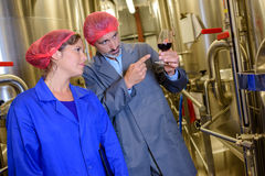 Man and woman in distillery looking at glass wine Royalty Free Stock Photos