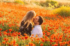 Man and woman embracing and kissing in poppy field on the dusk. Man and women embracing and kissing in poppy field on the dusk, countryside Malta stock image