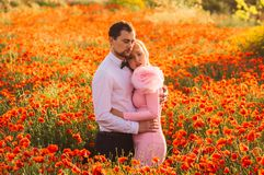 Man and woman embracing in poppy field on the dusk. Man and women embracing in poppy field on the dusk, countryside Malta royalty free stock images