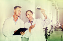 Man and woman employees on winery manufactory Royalty Free Stock Photos
