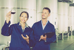 Man and woman employees on winery manufactory Royalty Free Stock Image