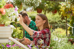 Man and woman with flowers in garden Stock Photo