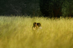 Man and Woman on Green Grass Field Royalty Free Stock Photography