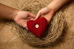 Man and woman hands holding decorative red heart in nest Royalty Free Stock Photo