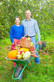 Man and woman  with  harvest Royalty Free Stock Image