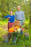 Man and woman  with  harvested vegetables Stock Images