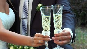 Man and woman holding glasses of champagne. The bride and groom are holding champagne glasses stock video footage