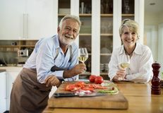 Man and Woman Holding Wine Glasses Royalty Free Stock Images