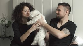 Man and woman lie on bed with little white West Highland Terrier.  stock video footage