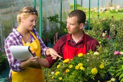 Man and a woman make notes in a greenhouse for breeding plants for sale. A men and a women make notes in a greenhouse for breeding plants for sale Stock Images