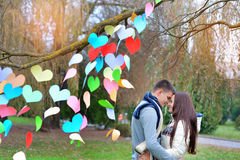 Man and woman in the park on Valentine's Day, the tree is decora Royalty Free Stock Photos