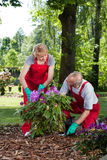 Man and woman planting a flower Stock Images