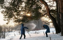 Man and woman playing snowballs in the winter forest. Sunset in the winter forest. royalty free stock images