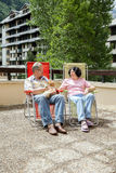 The man and woman rest on summer terrace with cat Stock Images