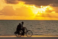 Man with woman riding by bicycle at sunset along the ocean coast, Zanzibar Tanzania. royalty free stock image