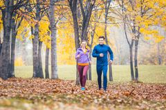 Man and woman running as fitness sport in an autumn park. With colorful foliage royalty free stock photography