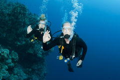 Man and woman scuba dive togeather Stock Photography