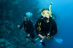 Man and woman scuba dive togeather. Romantic couple scuba dive together in the ocean on a coral reef royalty free stock images