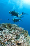 Man and woman scuba dive togeather. Romantic couple scuba dive together in the ocean on a coral reef stock images