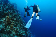 Man and woman scuba diver together Royalty Free Stock Image