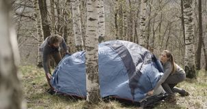 Man and woman setting up camping tent place in  birch woods forest. Couple people in love autumn outdoor trip in natur. E. Fall sunny day. 4k slow motion video stock video