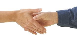 Man and Woman shaking hands Stock Photography