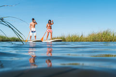 Man and woman stand up paddleboarding. Man and women stand up paddleboarding on lake. Young couple are doing watersport on lake. Male and female tourists are in Stock Photography