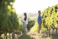 Man and woman standing by plants growing at vineyard Stock Photos