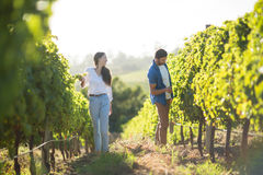 Man and woman standing by plants at vineyard Royalty Free Stock Photography