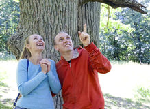 The man and the woman standing at a trunk of a huge tree, an oak show aside Royalty Free Stock Photos