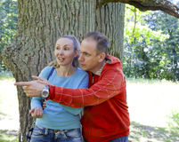 The man and the woman standing at a trunk of a huge tree, an oak show aside Royalty Free Stock Images