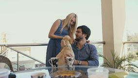 Man and woman stroking their dog on the terrace stock video footage