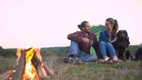Man and woman traveling with dog at camp. Sitting near camping tent and playing with pet on nature stock footage