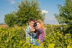 Man and woman in a vineyard. Man and women drinking wine in a vineyard Stock Photography