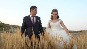 Man and woman walk holding each other hands, walking across field with wheat and smiling. Honeymoon for two. Together stock video footage
