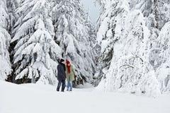Man woman walk winter snow trees Royalty Free Stock Image