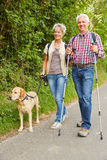 Man and woman walking with dog. Elderly men and women hiking and walking with dog in nature Royalty Free Stock Photo