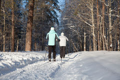 Man and woman walking on ski in winter forest Royalty Free Stock Photos