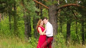 Man and woman walking together in the woods. Start a romantic relationship. Attractive man and woman strolling together in the woods stock footage