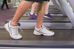 Man and woman walking on treadmills Stock Image