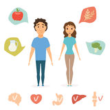 Man and women healthy food. Infographics. Slim people concept. and human organ chart. Smile couple diet. Heart, brain, liver, bone, stomach vector icon Royalty Free Stock Images