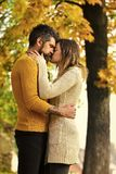 Man and woman at yellow tree leaves. Stock Photography