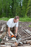The man in wood saws a tree a chain saw Stock Photos