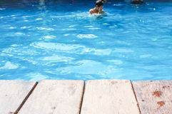 Man ,wood terrace and swimming pool Royalty Free Stock Images