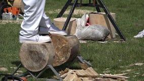 Man woodchopping wood log stock video footage